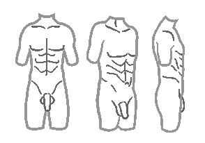 Body C