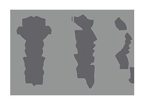 Body D